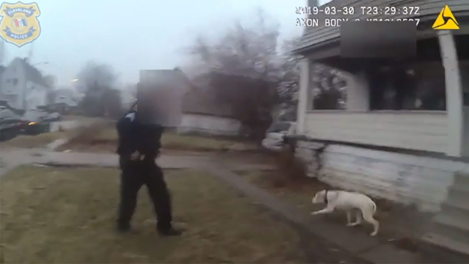 The graphic video shows the dog hanging over the side of the two-story house.