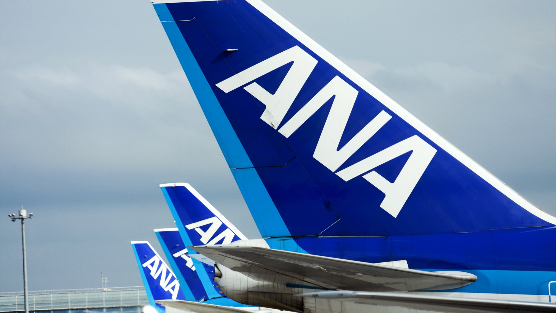 All Nippon Airways has completed a test flight of a new wide-body aircraft with its arrival in Hawaii.