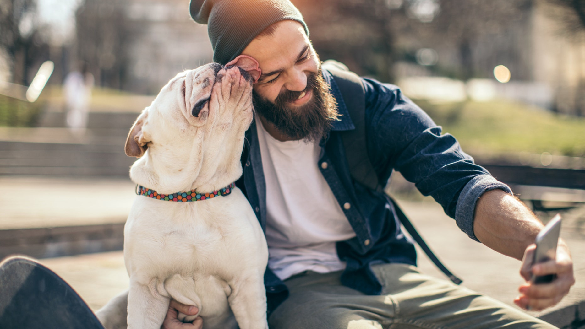 Bearded men carry more germs than dogs