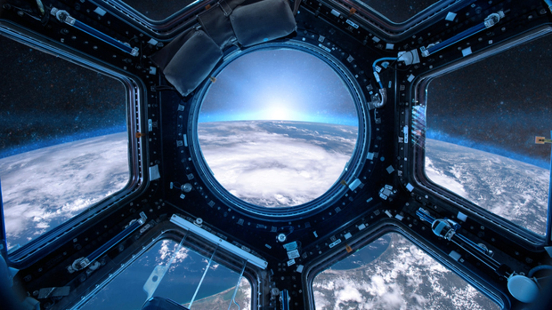 There is toxic fungus living in space. But no one knows whether it poses any threat to human health yet.