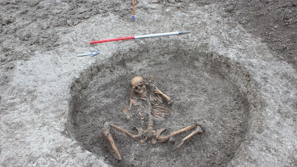 A female skeleton was found with the feet cut off and placed by her side with arms bound behind her head. (Thames Water)
