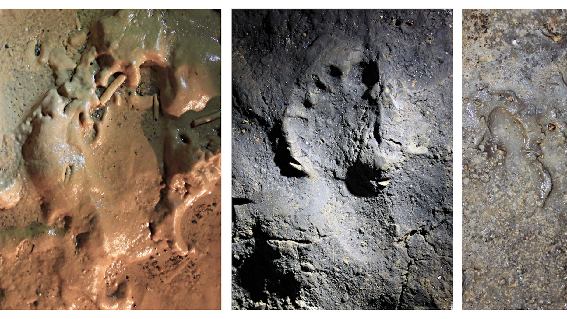 Researchers found a sum of 180 tellurian footprints and traces that were done about 14,000 years ago in a cavern in northern Italy. Here are 3 of a footprints, done on opposite surfaces within a cave.