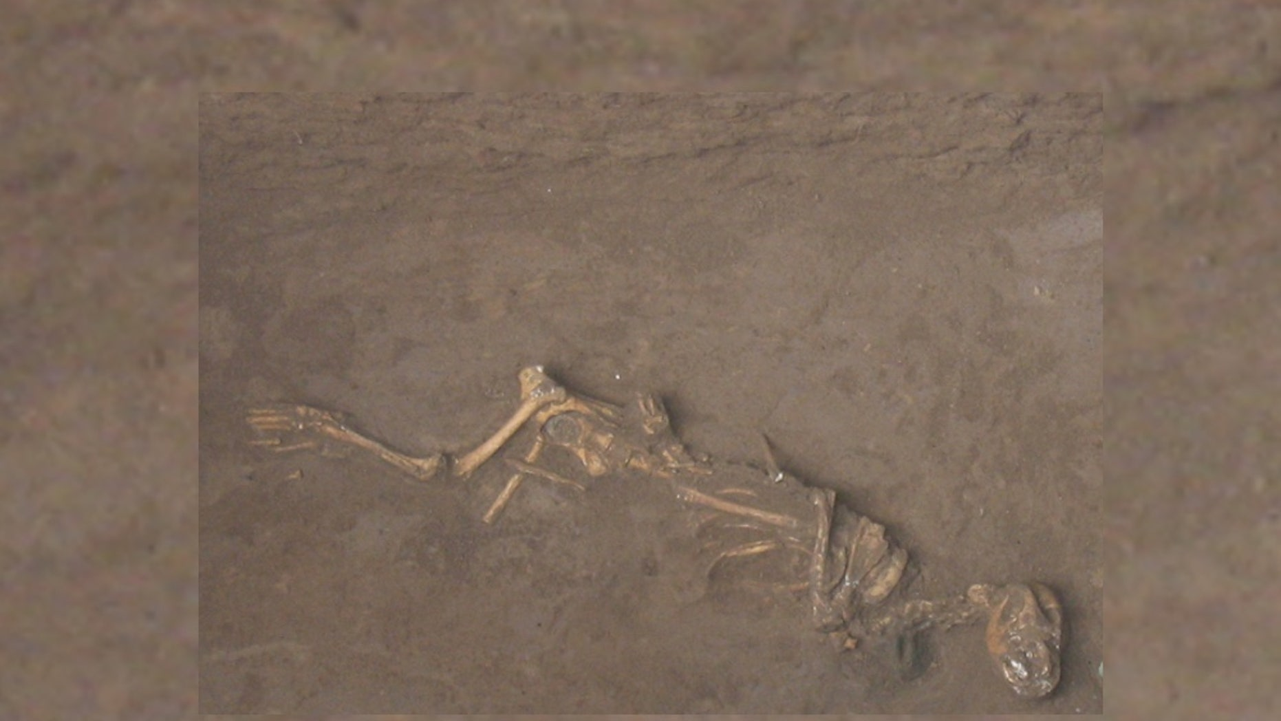 A Bronze Age dog found buried with a bell around its neck at the site of Sipanmo in Anyang, China.