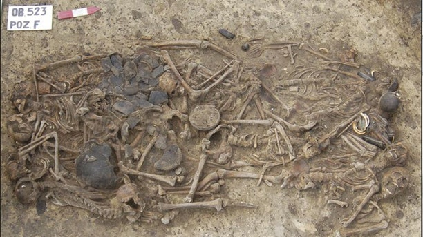 Researchers have found that the 15 skeletons found in this 5,000-year-old grave site were all related to one another. The burial site was found in 2011 near the village of Koszyce in southern Poland.