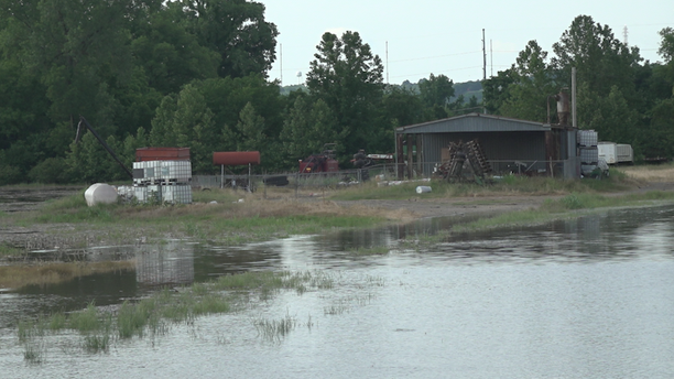 """This is farmland, you're not even supposed to be able to visually see the river right now,"" Stewart said while behind Walmart, adjacent to the farm shown above."