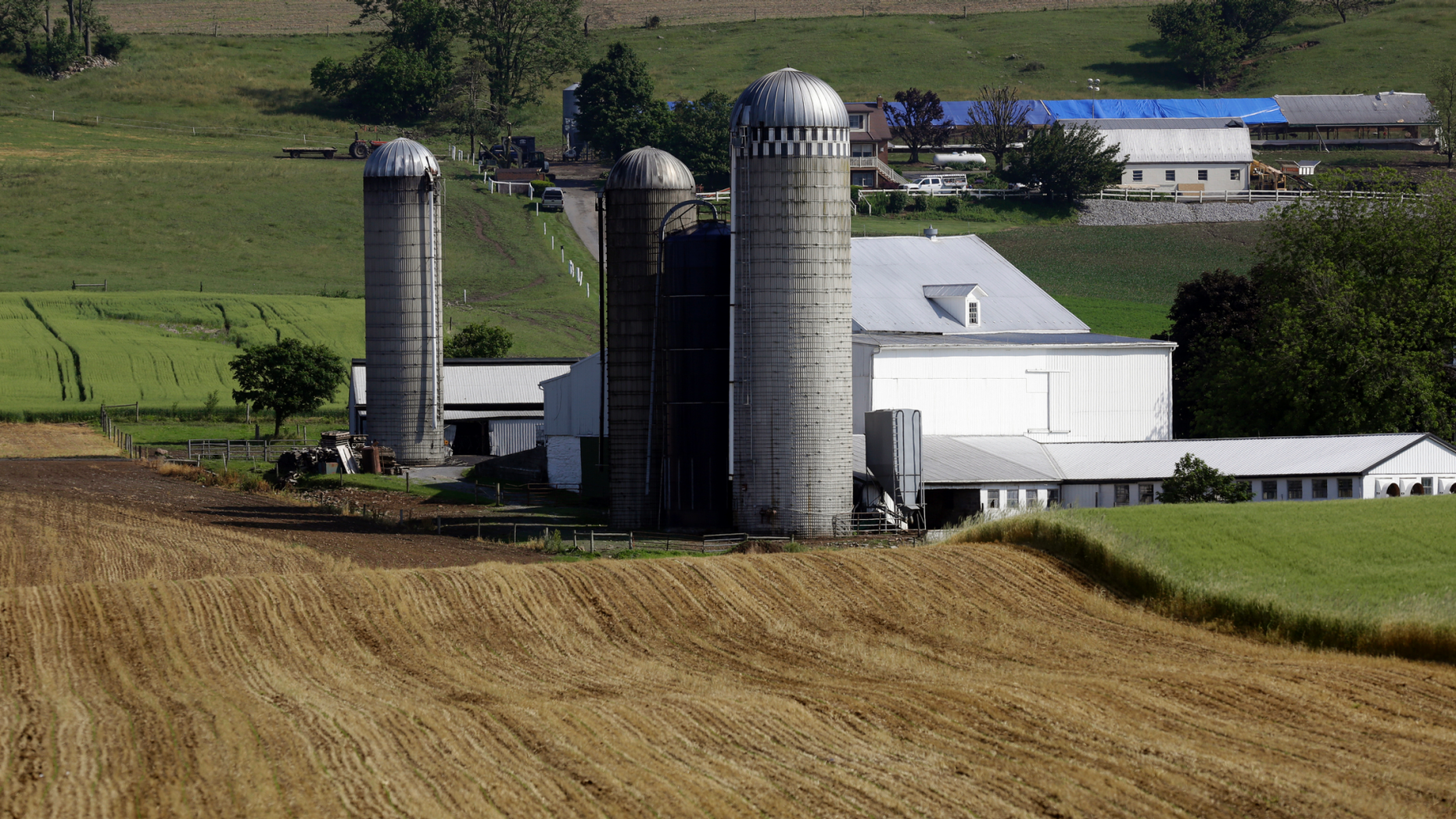 FILE- This May 29, 2019, file photo shows a farm outside Morgantown, Pa. On Tuesday, June 11, the Labor Department reports on U.S. producer price inflation in May. (AP Photo/Jacqueline Larma, File)