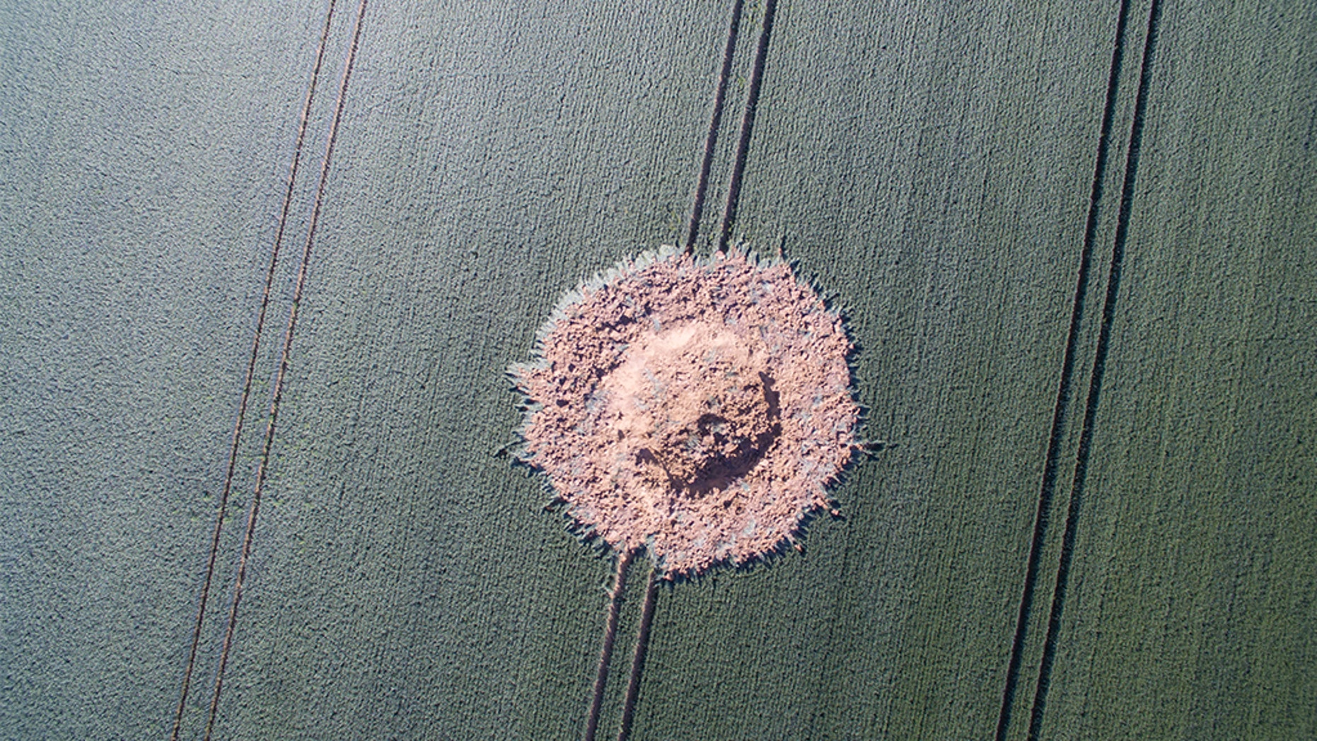 A big crater is pictured on a corn field after a bomb from the World War exploded in Halbach, Germany, Monday, June 24, 2019. The bomb must have stayed under the corn field since the World War until the chemical detonator reacted in the end. No one was injured. (Boris Roessler/dpa via AP)
