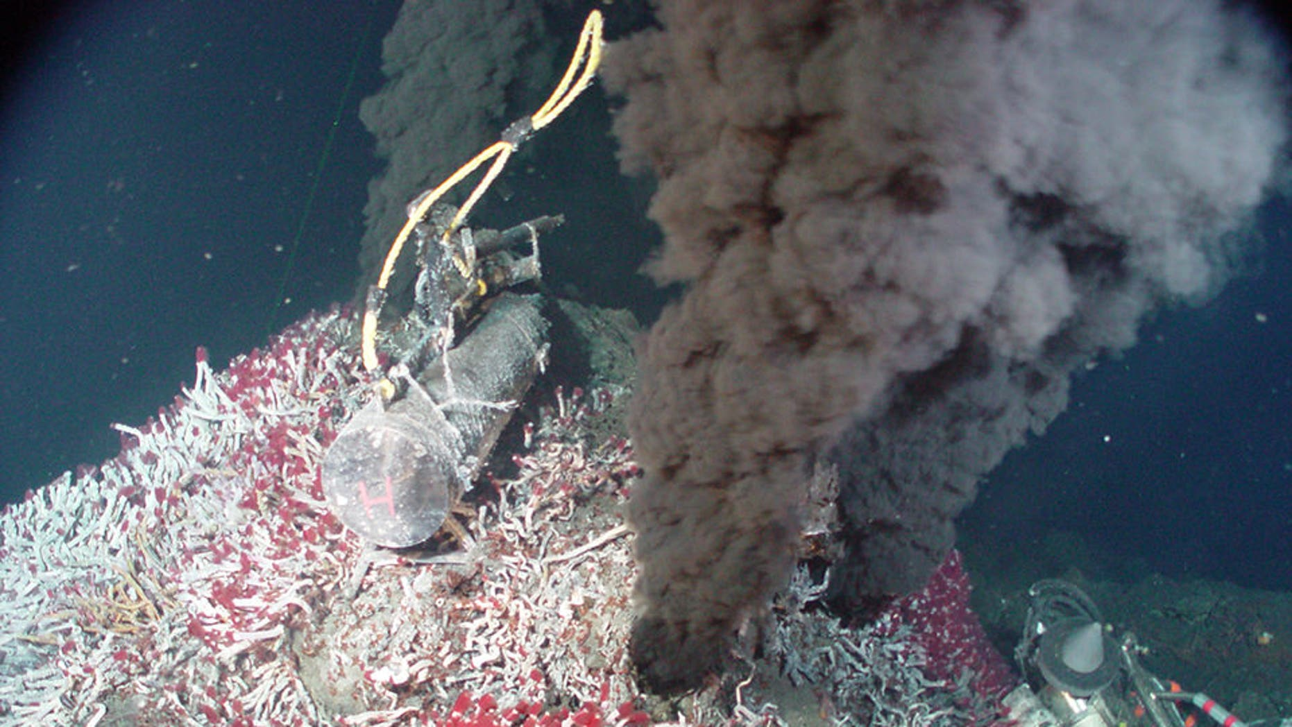 Every year, billions of gallons of sea H2O tumble into a Earth during tectonic image boundaries, afterwards rush behind out during hydrothermal vents like a one seen here. A new investigate shows that this low H2O cycle might minister to hundreds of feet of sea turn detriment over time.