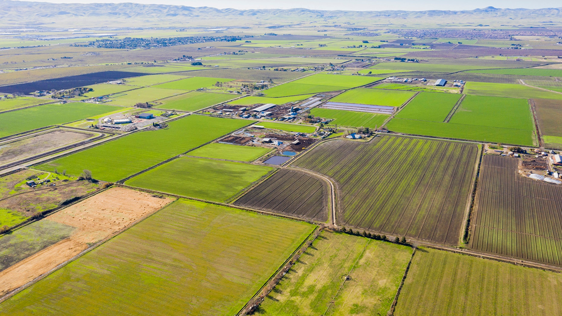 An aerial view of farmland in California's central valley. (iStock)