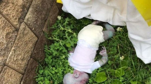 A report of a baby in a New York City park Tuesday was revealed to be a realistic-looking doll.