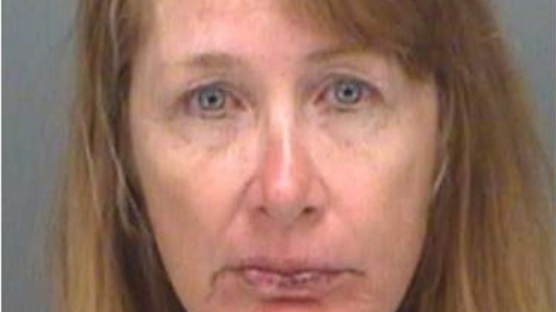 Victoria Morley, 54, pleaded no contest to misdemeanor disorderly conduct and posted a $500 bond, authorities say.
