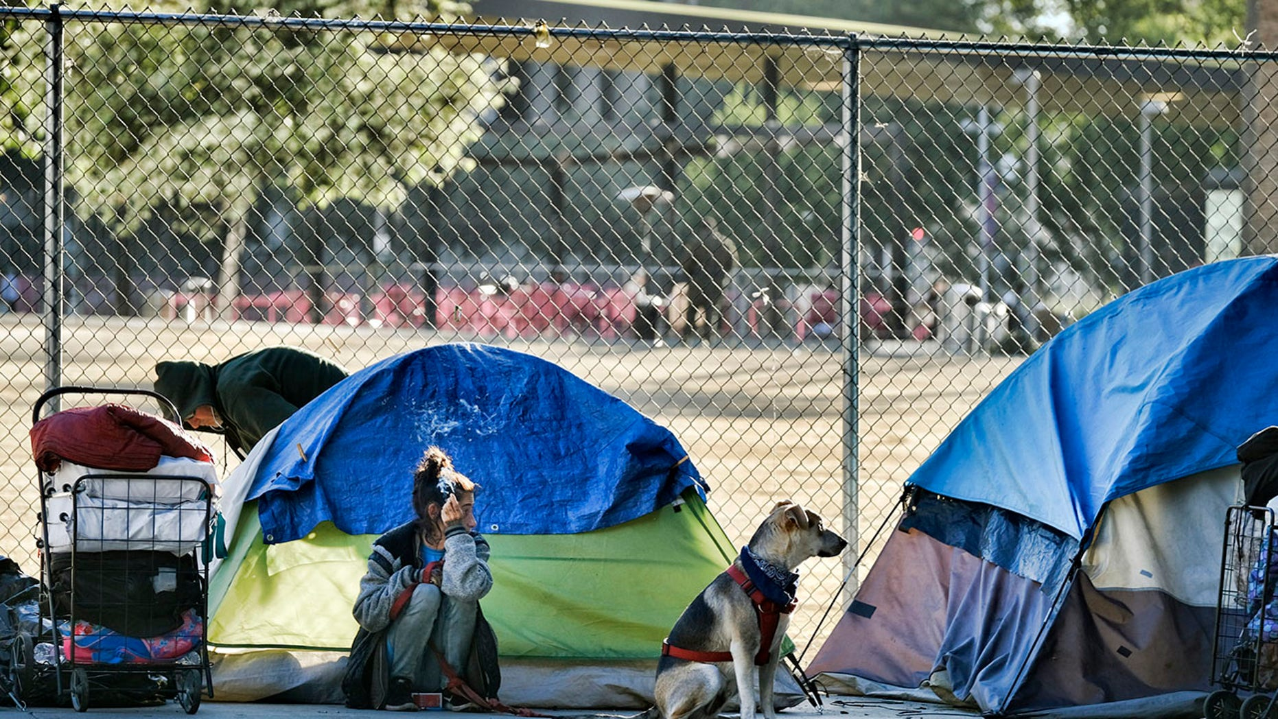 Westlake Legal Group AP19182802805941 Los Angeles business owners put up fences, thorny plants to deter homeless: report fox-news/us/us-regions/west/california fox news fnc/us fnc Brie Stimson article 7241b41f-a4b6-54f8-8c63-ff4f1b1d3155