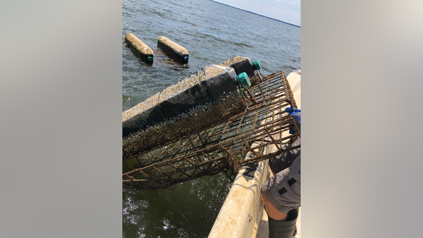 The thieves raided a total of 72 bags from 12 oyster cages belonging to the Pensacola Bay Oyster Co.