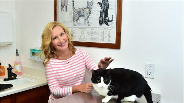 Actress Angela Kinsey is a Cat Lover
