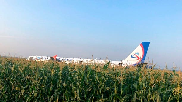 In this file image taken from a video distributed by Russian Investigative Committee, A Russian Ural Airlines' A321 plane is seen after an emergency landing in a cornfield near Ramenskoye, outside Moscow, Russia, Thursday, Aug. 15, 2019.