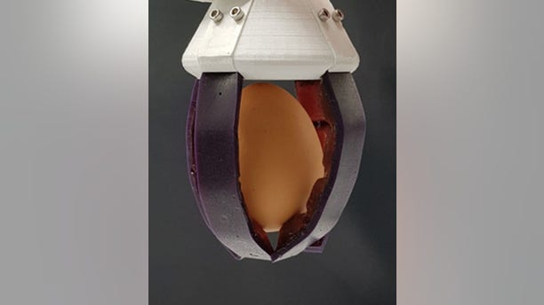 A gripper consisting of two different self-healing materials holding an egg.