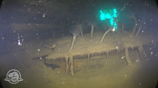 A storage compartment in Captain Crozier's cabin on HMS Terror, partly covered by silt and sea anemones, with one of the cabin's stern gallery windows clearly visible in the background. (Parks Canada, Underwater Archaeology Team)