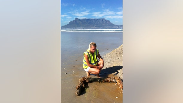 Briege Williams of the South African Heritage Resources Agency (SAHRA) inspecting an object found in the search for the 'Haarlem' wreck.