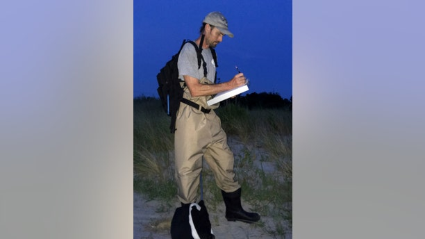 --PLEASE HOLD-- This Tuesday, July 16, 2019, photo shows Jason Davis, a biologist with the Delaware Department of Natural Resources and Environmental Control, taking notes on the conditions at a state park near Bethany Beach, Del., before surveying the area in search of the Bethany Beach Firefly, which some environmentalists want added to the federal Endangered Species List. (AP Photo/Randall Chase)