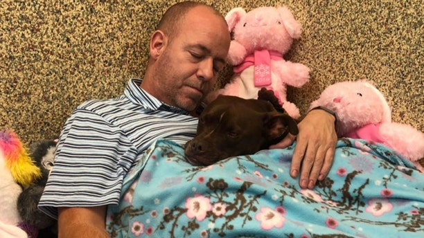 Scott Poore and Queen. Poore decorated the dog's room and moved in with her with the goal of attracting the attention of a potential adopter.