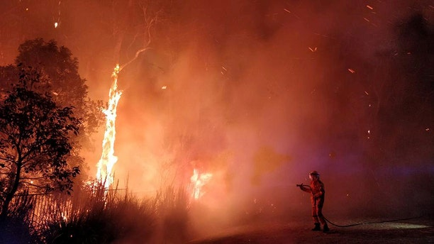 Firefighters battled a bushfire in Peregian Springs on the Sunshine Coast on Sunday. AAP Image/John Park/via Reuters