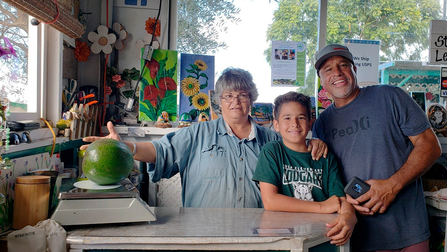 The Pokini family's avocado tree is more than 10 years old and 20 feet (6.1 meters) tall. Mark Pokini planted it when his son was born, using a seed from his brother-in-law's tree on Oahu island, he said.
