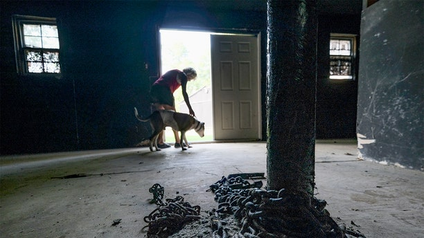 Melissa Crampton leads Dakota from a building that was once part of Michael Vick's dog fighting compound in Surry, VA on August 7, 2019. The property is now occupied by Good Newz Rehab Center, an organization that shelters dogs that have been chained or penned. (Photo by Bonnie Jo Mount/The Washington Post via Getty Images)