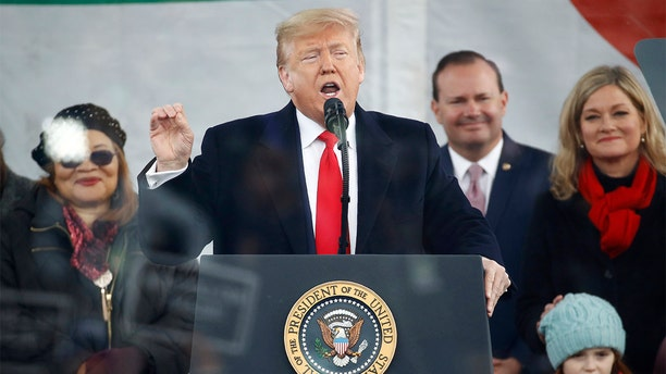"""President Donald Trump speaks at the """"March for Life"""" rally, Friday, Jan. 24, 2020, on the National Mall in Washington. (AP Photo/Patrick Semansky)"""
