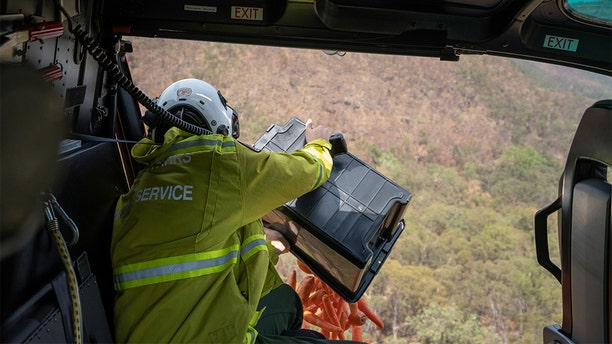 NSW's National Parks and Wildlife Service staff dropping the vegetables from a helicopter.