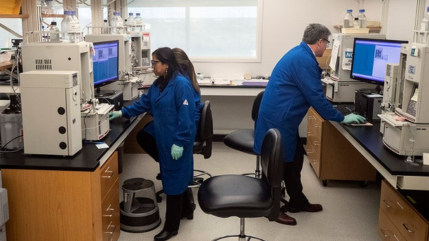 People work in a lab that President Donald Trump watched during his meeting about the coronavirus at the Centers for Disease Control and Prevention, Friday, March 6, 2020 in Atlanta. (AP Photo/Alex Brandon)