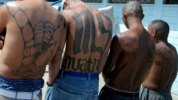 """Four unidentified members of the Mara Salvatrucha """"MS-13"""" show their tattoos in the unit where they are kept imprisoned in the National Penitentiary in Tamara."""