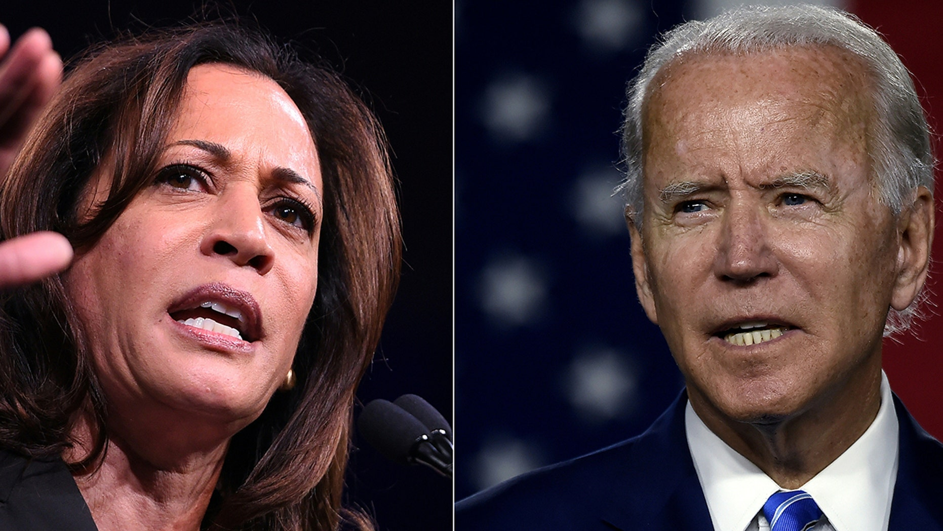 Biden's choice of Harris for ticket not universally embraced by party