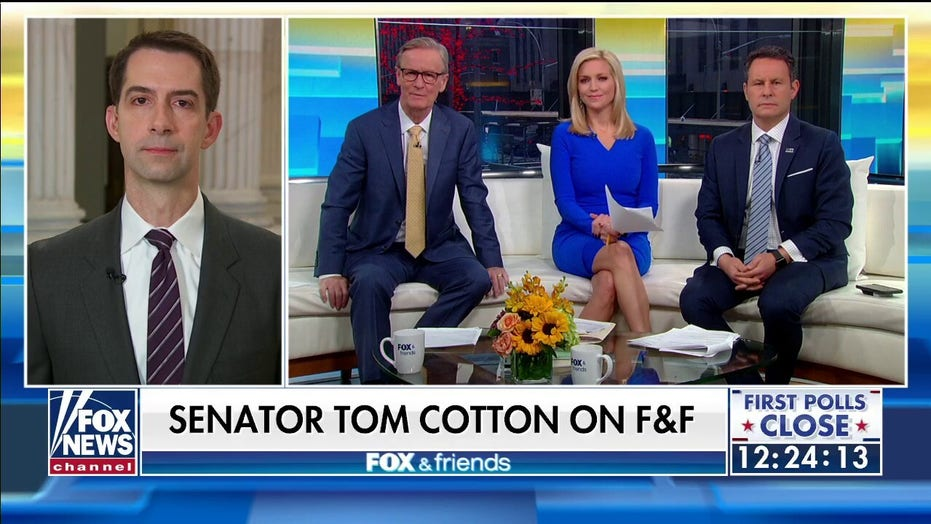 Tom Cotton: We'll forgive Schumer's appalling remarks if he joins us in opposing late-term abortion