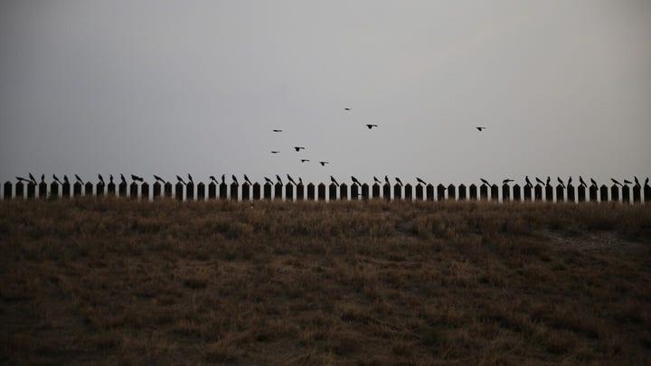 2 men on FBI terror watch list arrested by border agents