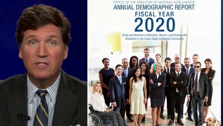 Tucker mocks government agency for using stock photo to show diversity