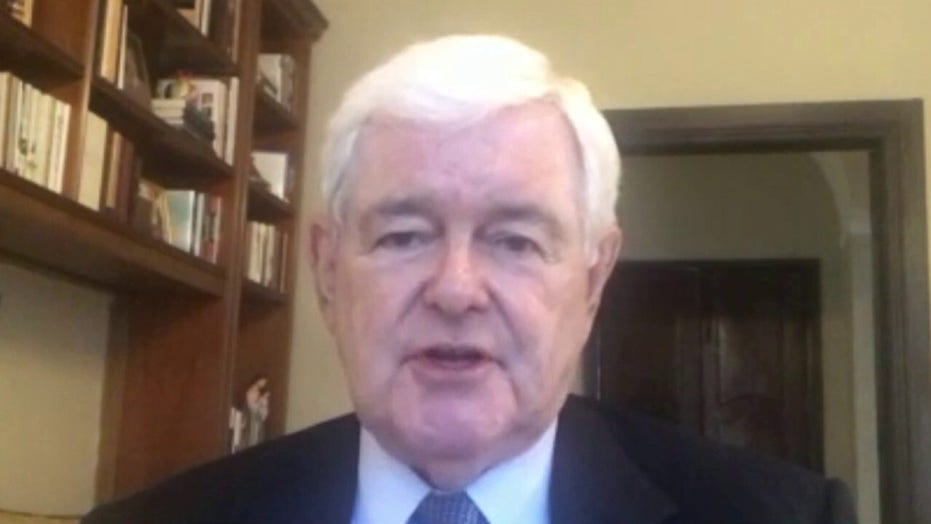 Newt's solution to 'mobs' toppling statues amid unrest