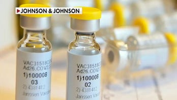 FDA panel endorses Johnson & Johnson's COVID-19 vaccine