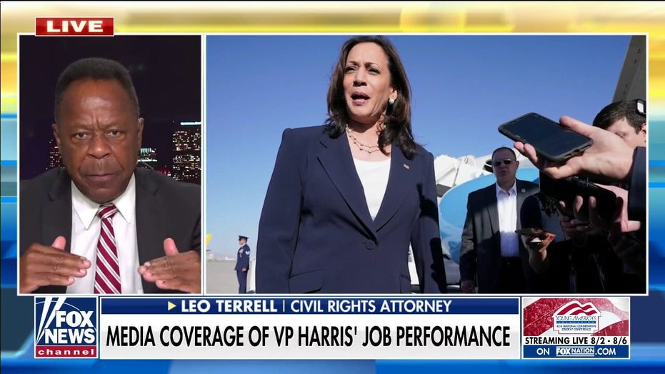 Leo Terrell rips liberal 'View' hosts for blaming VP's unpopularity on racism: 'Conclusion without any facts'