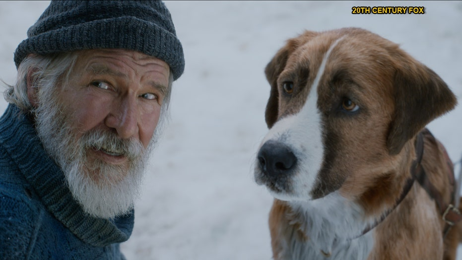Harrison Ford talks 'The Call of the Wild' and what else he wants to accomplish creatively