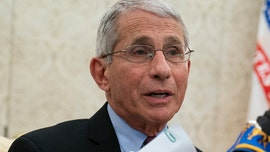 Fauci says extended stay-home orders could cause 鈥榠rreparable damage鈥�