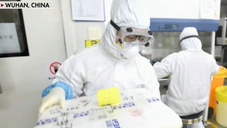 'Special Report' on coronavirus origins and China