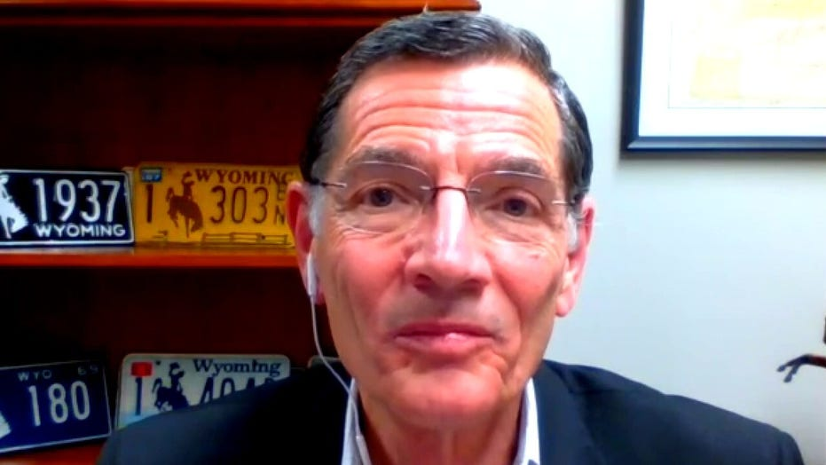Sen. John Barrasso discusses race to find coronavirus vaccine, says antibody testing would be 'game changer'