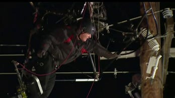 Trapped paraglider rescued from tangled power lines in California