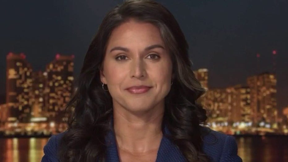 Tulsi Gabbard warns vague federal definition of 'domestic extremists' will further endanger civil liberties