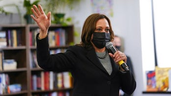 Kamala Harris calls for 'immediate relief' for Northern Triangle in virtual meeting with Mexican president