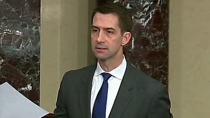 Sen. Cotton calls out Democrats' demands in coronavirus stimulus package
