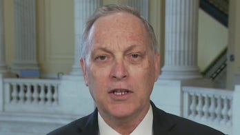 Rep. Andy Biggs: Fight for election integrity – here's how Americans can defeat Democrats' HR1
