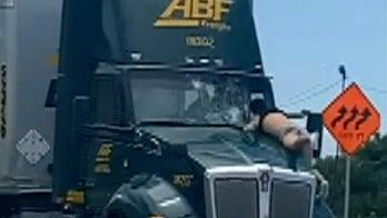Warning, graphic language: Florida man rides 18-wheeler hood on highway