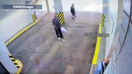 Chicago violence: Chilling video appears to show woman, 85, slammed during robbery