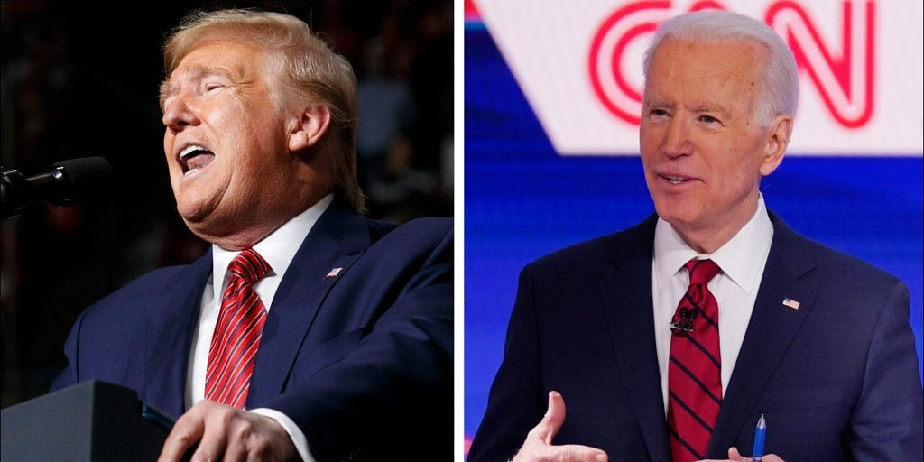 Biden leads in general election matchup but Trump voters more committed: poll